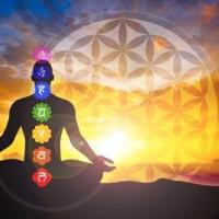 Essential Rhythm of Yoga and Meditation